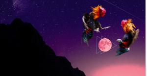moving meditation high balance moon