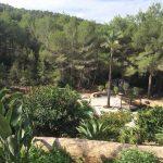 Aloe Valley Sankt Gertrudis Ibiza