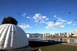 Love Tuner Dome
